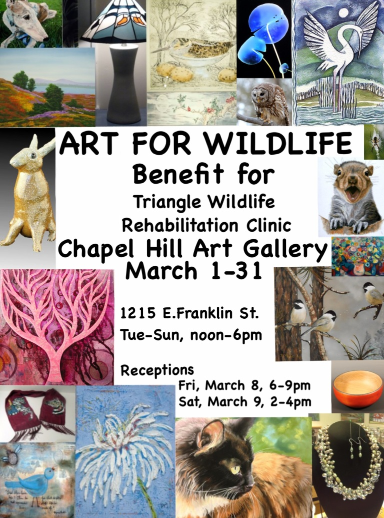 I'm participating in an art show at the Chapel Hill Art Gallery, benefiting the Triangle Wildlife Rehabilitation Clinic