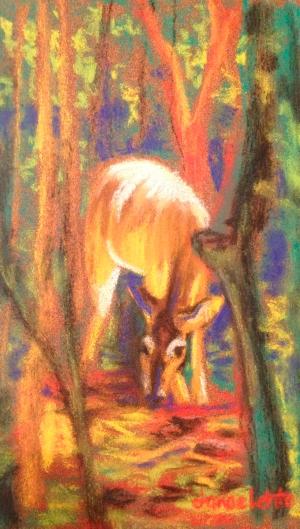 """""""Hidden"""" (Deer) by Janae Lehto"""