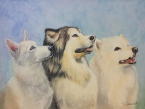 """Best Friends"" (Three Sled Dogs) by Janae Lehto"
